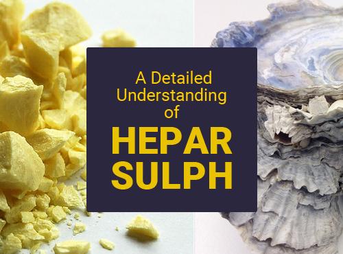 A Detailed Understanding of Hepar Sulph