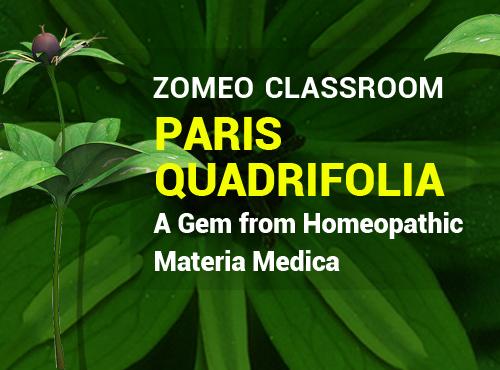 Paris Quadrifolia - A Gem from Homeopathy Materia Medica